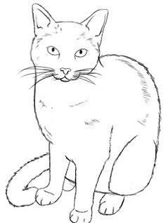 How to Draw a Cat http://www.drawcentral.com /2012/06/how-to-draw-cat.html