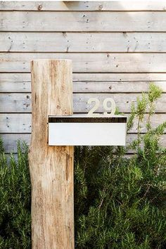 letterbox-william-dangar