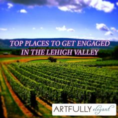 Top Places to Get Engaged in the Lehigh Valley