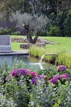 Very sweet garden