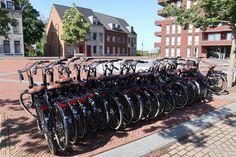 Bij De Dousberg Fietsverhuur, op Het Wilhelmus, kun je stadsfietsen, e-bikes en kinderfietsen van hoge kwaliteit huren. Bij de fietsverhuur en de receptie zijn diverse fietsroutes en -kaarten verkrijgbaar om de prachtige omgeving van Maastricht en omgeving te ontdekken. Wil je alvast een fiets reserveren? Dat kan via de website van Fietsverhuur Dousberg. Resorts, Om, Website, Vacation Resorts, Beach Resorts, Vacation Places