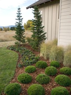 Landscaping is quite huge and can be a bit overwhelming on occasion. In spite of the fact that there are a lot of distinct suggestions on landscaping, only some of which are universal and thereR… #LandscapingIdeas
