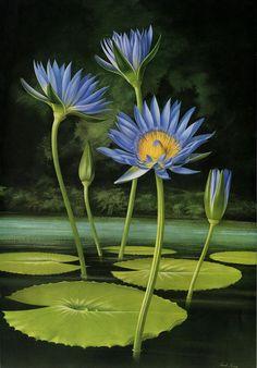 Paul Jones 1921-1997 ~ Australian painter - Flowers of May https://www.pinterest.com/buffygirl6/