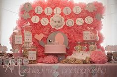 It doesn't get much sweeter than this PINK ELEPHANT 1ST BIRTHDAY PARTY featured on Kara's Party Ideas- www.KarasPartyIdeas.com. Love the tissue pom backdrop!