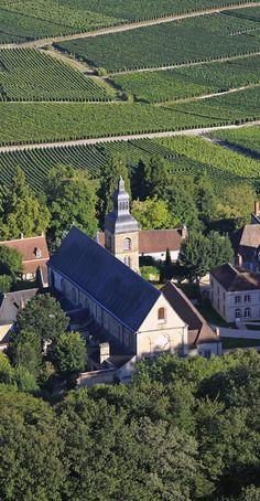 40 Idees De Vignoble De Champagne Epernay Parc Naturel Champagne
