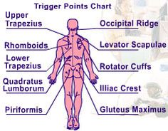 Back Pressure Points Diagram | Massage Tool for Back Pain Neck Pain Sore Muscles