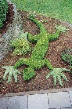 Gigantic garden gecko topiary!  Enjoy RUSHWORLD boards, GARDENS THAT MAKE YOU SWOON, SHE SHEDS AND MOM CAVES and UNPREDICTABLE WOMEN HAUTE COUTURE. Follow RUSHWORLD! We're on the hunt for everything you'll love! #Topiary #AmazingTopiary #LuxuryTopiary