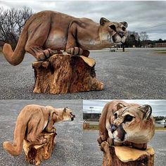 Chainsaw Carving of Mountain Lion by Jon Vincent. Post with 425 views. Chainsaw Carving of Mountain Lion by Jon Vincent. Chainsaw Wood Carving, Wood Carving Art, Wood Carvings, Art Sculpture En Bois, Chain Saw Art, Tree Carving, Mountain Lion, Wow Art, Wood Creations