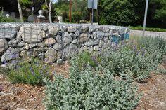 Oakdell Sanctuary - eclectic - spaces - los angeles - Dirt Diva Designs
