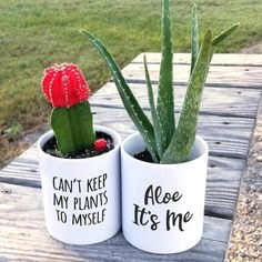 Idea Of Making Plant Pots At Home // Flower Pots From Cement Marbles // Home Decoration Ideas – Top Soop Small Potted Plants, Small Succulents, Indoor Plants, Potted Flowers, Planters Flowers, Painted Flower Pots, Painted Pots, White Ceramic Planter, Flower Pot Design