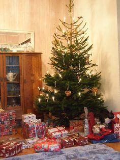 Joko, Christmas Tree, Holiday Decor, Home Decor, Teal Christmas Tree, Homemade Home Decor, Xmas Trees, Interior Design, Christmas Trees