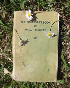 .Curious book covers that inspire us at www.moltenstore.com