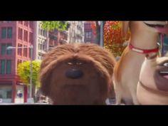 2016.Nový animovaný film   Tajný život mazlíčků   nejlepší animovaný film - YouTube Youtube, Youtubers, Youtube Movies