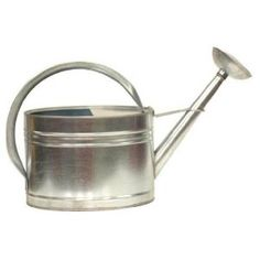 2 gallon watering can Stainless Steel $34.99