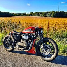 Cafe sporty@federico_motor_co #sportster #harley #bobber #iron883 #custom…