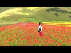 Castelluccio di Norcia #raiexpo #youritaly #umbria #italy #expo2015 #experience #visit #discover #culture #food #history #art #nature
