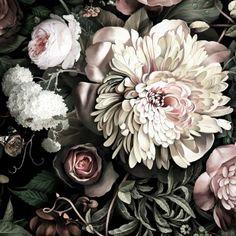 Dark Floral II Black Saturated - Wallpaper collection - Webshop - Ellie Cashman Design