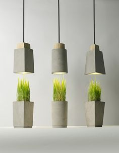 concrete planter that goes with pendant lights as center piece for the dinningroom table???  Bentu design