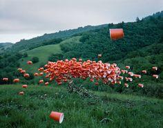 """Nous vous avons déjà montré le travail photographique de Thomas Jackson et plus particulièrement sa série baptisée """"Emergent Behavior"""".  Aujourd'hui, cette série est agrémentée de plusieurs nouveaux clichés tout aussi réussis les uns que les autres.  Thomas Jackson est fasciné par les regroupements d'animaux ou les essaims, comme les sauterelles, les bancs de poissons, les troupeaux,… Avec ses clichés uniques, il essaie de reproduire ces formes organisées avec des objets qui nous entourent."""