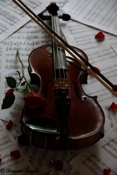 violin.......:) makes me think of phantom of the opera