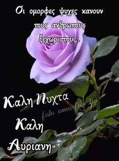 Good Night, Rose, Flowers, Plants, Wallpapers, Nighty Night, Pink, Wallpaper, Plant