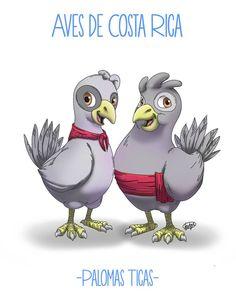 Albur / Nombre de las aves de Costa Rica, Palomas Ticas #albur #AlburMexicano #DobleSentido