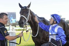 "Here's 14 for the Equine Queen of the World."" Winx 💙"