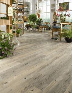 Vinyl flooring option. Hartsfield commercial grade floor from Belgotex.