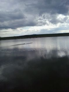 On the Olt river