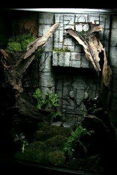 Reptile Habitat, Reptile Room, Reptile Cage, Terrariums Diy, Gecko Terrarium, Les Reptiles, Reptiles And Amphibians, Gecko Vivarium, Frogs