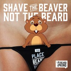 Shaved young beavers