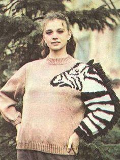 Zebra Jumper