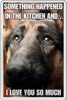 Dog lover gift Novelty FRIDGE MAGNET ALSATIAN GERMAN SHEPHERD DOG