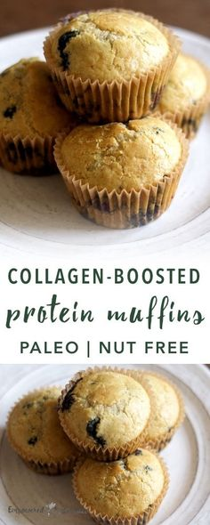 These Paleo Protein Muffins feature collagen, the only protein powder I use and recommend. Collagen supports skin, joint, and digestive wellbeing. Protein Muffins, Protein Foods, Protein Cake, Protein Cookies, Protein Recipes, High Protein, Paleo Muffin Recipes, Ketogenic Recipes, Free Recipes