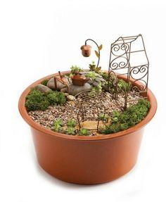 Miniature garden kit from Evergreen, includes pot