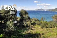 Sea front plot of land for sale in Pentati Corfu-CPA 3595  From: www.cpacorfu.com/en/properties/3595 Corfu Island, Corfu Greece, Land For Sale, Sea, Mountains, Nature, Travel, Naturaleza, Trips