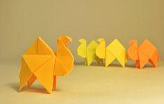 Origami CAMEL