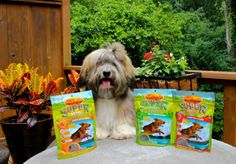 Win Zuke's new Supers dog treats! Rocco loves 'em Enter here through July 2, 2013: http://www.todogwithlove.com/2013/06/review-and-giveaway-zukes-supers-are.html