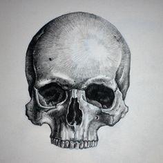 Skull Drawing - Dr. Odd