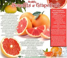 A study revealed that obese people that consumed half a fresh grapefruit before a meal lost more weight. But be careful with grapefruit if you take medicin. Health And Nutrition, Health And Wellness, Nutrition Tips, Holistic Nutrition, Health Benefits Of Grapefruit, Grapefruit Nutrition, Just In Case, Just For You, Cold Symptoms