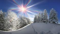 Зима, снег, сугробы, деревья, пейзаж — #730622   http://ru.gallery.world/wallpaper/730622.html