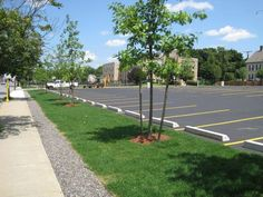 Waltham Watch Factory. Infiltration trenches lining the parking lot play an important role in the site's overall stormwater management system. Richard Burck Associates