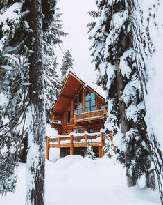 The deafening quiet of winter. Mt Hood by Snow Cabin, Forest Cabin, Winter Cabin, Cozy Cabin, Alaska Cabin, Honeymoon Cabin, Cabin In The Woods, Log Cabin Homes, Outdoor Survival