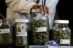 """""""Decriminalization has been a resounding success for the municipal government and for cannabis consumers in Philadelphia."""" Philly NORML Chris Goldstein"""