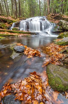 Leaves And Falls is a photograph by Thomas Miller. Tucker falls, Milford, NH. Source fineartamerica.com