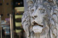23. Cat by Mixmax3d.deviantart.com on @DeviantArt #statue #mixmax3d #challenge #photography #100themeschallenge