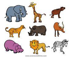 12 best safari animals images on pinterest safari animals