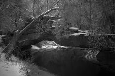 Red River Gorge Rock Bridge