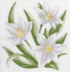 Embroidered Kitchen Towel White Star of Bethlehem - deal bedding Machine Embroidery Applique, Embroidery Fonts, Hand Embroidery, Janome, Baby Girl Dress Patterns, Hand Lettering Tutorial, Wedding Embroidery, Star Of Bethlehem, Cross Stitch Flowers