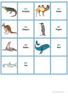 Games in German class: Memory - the animals-Spiele im Deutschunterricht: Memory – die Tiere Games in German lessons: Memory – the animals worksheet – free DAF worksheets - Deutsch Language, Learn Arabic Alphabet, Animal Worksheets, All Languages, German Language Learning, German Words, Learn German, Kids Zone, Learning Arabic
